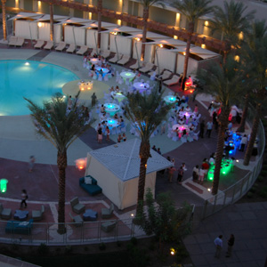 Corporate events the event group for Garden pool party 2015